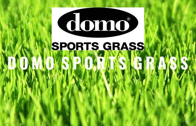 2DOMO logo2